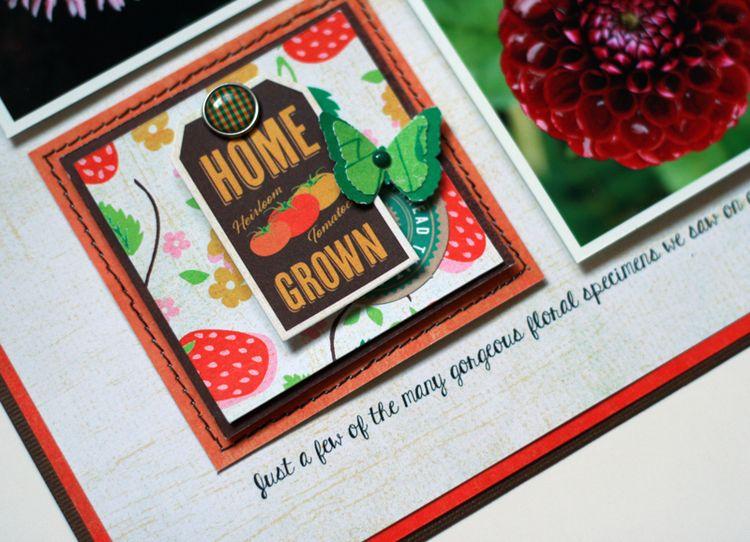 Bloom&Grow3