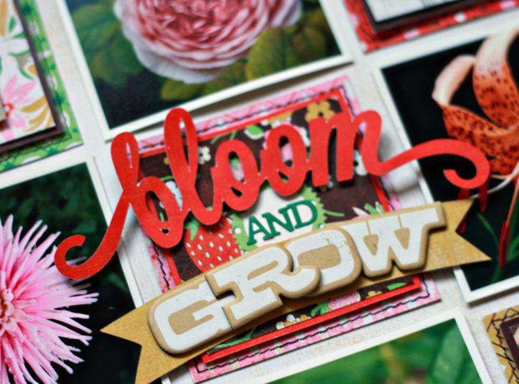 Bloom&Grow2